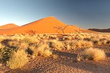 aka-Southern-Africa-2012-08-07__D3X3199_200_201.jpg