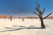 aka-Southern-Africa-2012-08-08__D3X3641_2_3_4_5.jpg