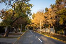 aka-Corona-Santiago-2020-05-01_Img000661.jpg