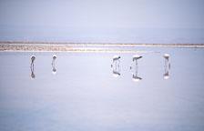 aka-Altiplano-2004-06-26_alt0005.jpg