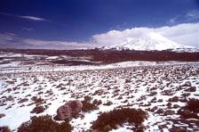 aka-Altiplano-2004-06-26_alt0015.jpg