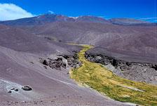 aka-Altiplano-2004-06-26_alt0022.jpg