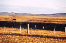 aka-Patagonia-2004-05-12_pata0024.jpg