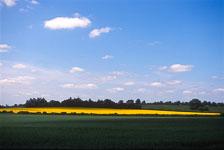 aka-South-England-2004-05-23_cam0003.jpg