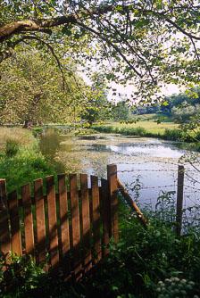 aka-South-England-2004-05-23_cam0008.jpg