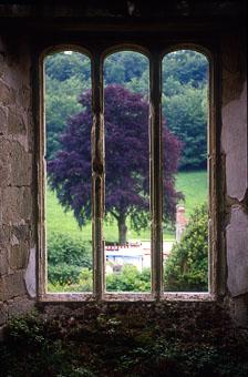 aka-South-England-2004-05-23_cam0011.jpg