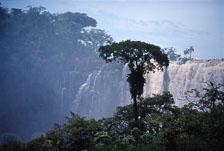 aka-Iguazu-2004-05-15_iguazu06.jpg