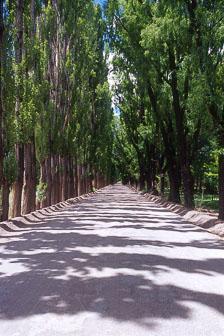 aka-Santiago-Mendoza-2013-08-11_men0019.jpg