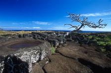aka-Easter-Island-2004-07-30_ipc0007.jpg