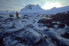 aka-Antarctica-2005-03-05_ant0045.jpg