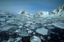 aka-Antarctica-2005-03-05_ant0047.jpg