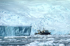 aka-Antarctica-2005-03-05_ant0057.jpg