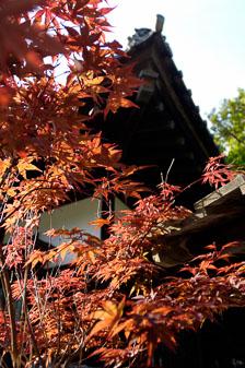 aka-Sapporo-Japan-2005-08-31_jap0005.jpg