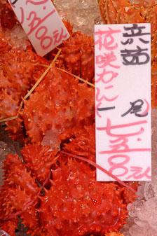 aka-Sapporo-Japan-2005-09-02_jap0008.jpg