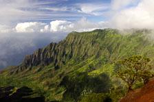 aka-Hawaii-2005-09-17_haw0027.jpg