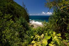 aka-Hawaii-2005-09-19_haw0037.jpg