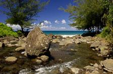 aka-Hawaii-2005-09-19_haw0038.jpg
