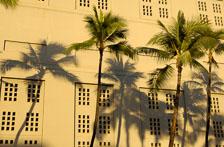 aka-Hawaii-2005-09-20_haw0039.jpg
