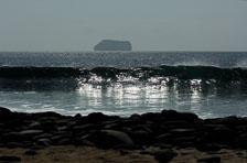 aka-Galapagos-2006-03-19_equ0037.jpg