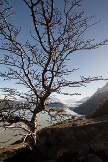 aka-Torres-del-Paine-2006-07-29__D2X11122-Edit.jpg