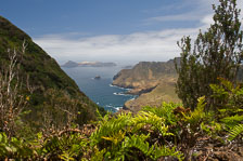aka-Robinson-Crusoe-Island-2006-12-28__D2X13471.jpg
