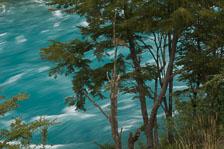 aka-Carretera-Austral-2007-03-07__D2X16029.jpg
