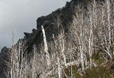 aka-Carretera-Austral-2007-03-09__D2X16830.jpg