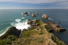 aka-New-Zealand-2008-02-08__D2X29801.jpg