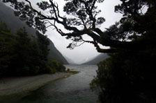 aka-New-Zealand-2008-02-10__D2X30768.jpg