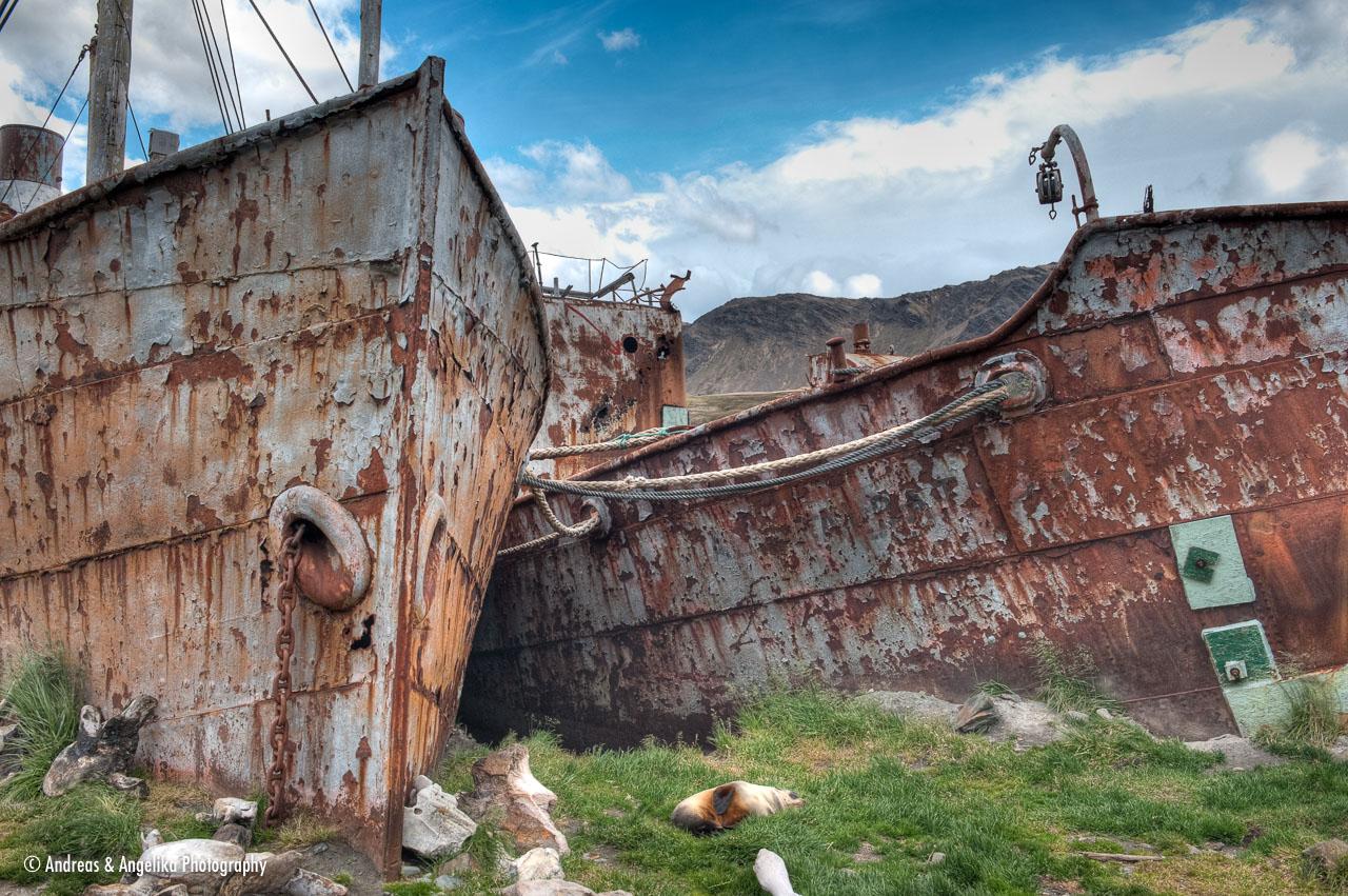 aka-Antarctic-Quest-2009-01-28__D3X11413-15.jpg
