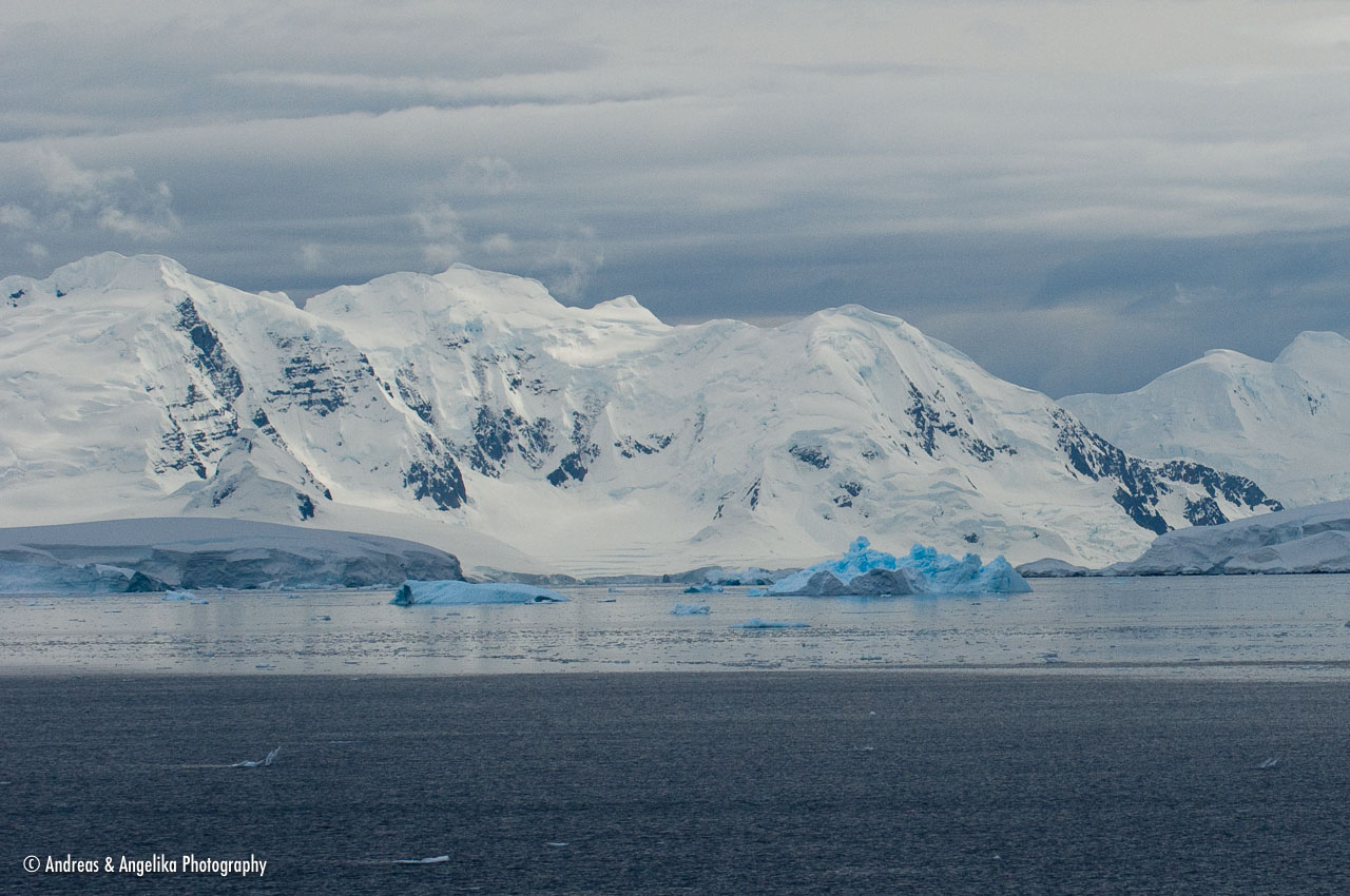 aka-Antarctic-Quest-2009-02-03__D2X32560.jpg