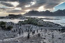 aka-Antarctic-Quest-2009-01-27__D3X9272-74.jpg