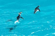 aka-Antarctic-Quest-2009-01-29__D3X12591.jpg