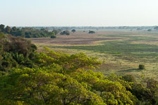 aka-Pantanal-2011-08-25__D3X2176.jpg