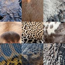 aka-Pantanal-2011-09-03_PantanalTextures.jpg