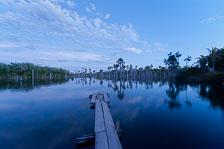 aka-Pantanal-2011-08-09__D3X5369.jpg