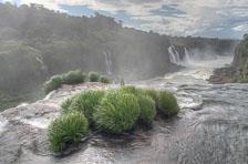aka-Iguazu-2012-02-28__D3X9738_39_40_41_42.jpg