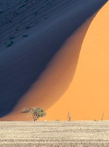 aka-Southern-Africa-2012-08-08__D3X4084.jpg