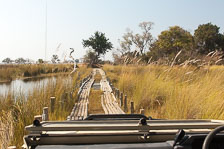 aka-Southern-Africa-2012-08-19__D2X3810.jpg