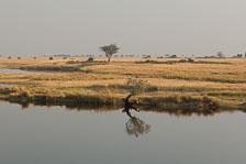 aka-Southern-Africa-2012-08-24__D2X3931.jpg
