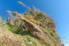aka-Chiloe-2012-12-31__D3X2068_69_70.jpg