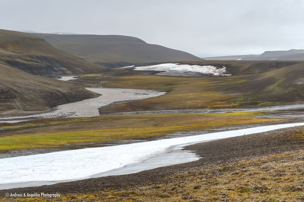 aka-Spitsbergen-2013-07-10__D3X7404_5_6.jpg