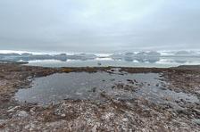 aka-Spitsbergen-2013-07-02__D3X3729_30_31_32_33.jpg