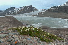 aka-Spitsbergen-2013-07-04__D3X5149_50_51.jpg