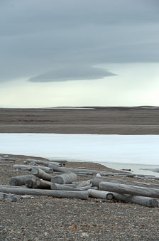 aka-Spitsbergen-2013-07-06__D3X6063_4_5.jpg