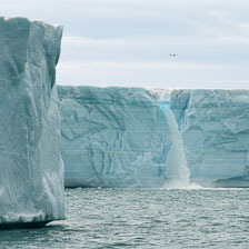 aka-Spitsbergen-2013-07-09__D3X7295.jpg
