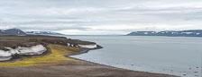 aka-Spitsbergen-2013-07-10__D3X7676_7_8-Edit.jpg