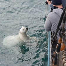 aka-Spitsbergen-2013-07-12__D8X2176.jpg