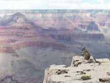 aka-Southwest-USA-2014-08-20__D8X9246.jpg