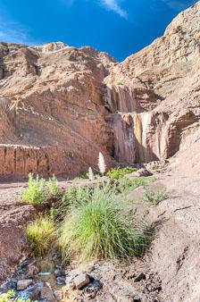 aka-Atacama-2016-03-28__D3X4921_2_3.jpg